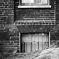 Sweet Mystery Of...windows by David M Davis