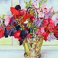 Sweet Peas In A Vase by Joan Thewsey