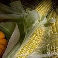Sweetcorn And Pumpkin by Ann Garrett