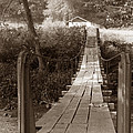 Swinging Bridge by David Bearden