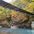 Swinging Bridge by Deanna Cagle