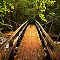 Swinging Bridge by Lj Lambert
