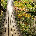 Swinging Bridge by Sandra Clark