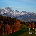 Swiss Alpine Scene by Susanne Van Hulst