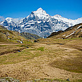 Swiss Alps - Schreckhorn And Valley by Anthony Doudt