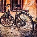 Swiss Bicycle by Debra and Dave Vanderlaan