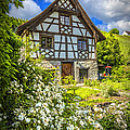 Swiss Chalet In The Garden by Debra and Dave Vanderlaan