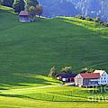Swiss Farm House by Susanne Van Hulst