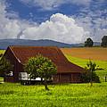 Swiss Farms by Debra and Dave Vanderlaan