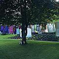 Swiss Garden by Matt Swinden