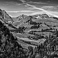 Swiss Valley Bw by Timothy Hacker