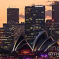 Sydney At Sunset by Matteo Colombo