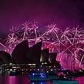 Sydney Fireworks - Purple by Rick Drent