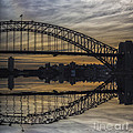 Sydney Harbour Late Afternoon by Sheila Smart Fine Art Photography