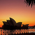 Sydney Harbour Sunrise by Inge Riis McDonald