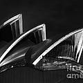 Sydney Opera House At Night by Tim Ferrier