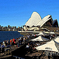 Sydney Opera House Bar by Catherine Sherman