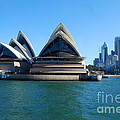 Sydney Opera House by Catherine Sherman