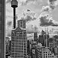 Sydney Skyline by Douglas Barnard