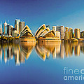 Sydney Skyline With Reflection by Algirdas Lukas