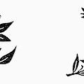 Symbols Weddings by Granger