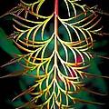 Symmetry by Beth Akerman