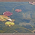 Sympathy Greeting Card - Autumn Lily Pads by Mother Nature