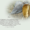 Sympathy Greeting Card - Poem And Milkweed Pods by Mother Nature