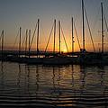 Syracuse Harbor Sunset by Georgia Mizuleva