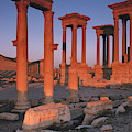 Syria, The Great Tetra Pylon At Palmyra by Steve Roxbury