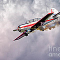 T-6 Texan by Jerry Fornarotto