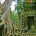 Ta Prohm And Tree Invasion In Angkor Wat Archeologial Park Near Siem Reap-cambodia by Ruth Hager