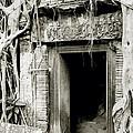 Ta Prohm Doorway by Shaun Higson