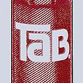 Tab Ode To Andy Warhol by Tony Rubino