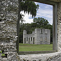 Tabby Ruins Through Window by Jean Macaluso