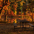Table For Two by Thomas Young