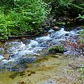 Tacoma Creek 2 by Ben Upham III