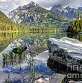 Taggart Lake  Grand Teton National Park by Gary Whitton