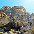 Tagged Rocks by Brent Dolliver