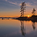 Tahoe Winter Sunset by Dianne Phelps