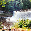 Tahquamenon Falls by Lydia Holly