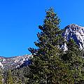 Tahquitz Rock - Lily Rock by Glenn McCarthy