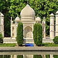 Taj Mahal by Ricky Barnard