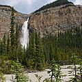 Takakkaw Falls by Ralf Broskvar