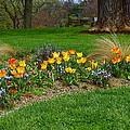 Take A Deep Breath Of Springtime by Byron Varvarigos