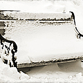 Take A Seat  And Chill Out - Park Bench - Winter - Snow Storm Bw 2 by Andee Design