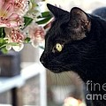 Take Time To Smell The Flowers by Peggy Hughes