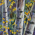 Tall Aspens by Renee Chastant