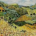 Tall Grass by Allan P Friedlander