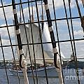 Tall Ship 4 by Tom Doud